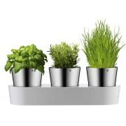 Zestaw 3 doniczek na zioła, WMF Gourmet
